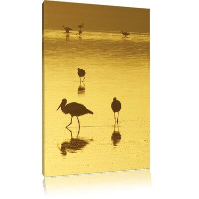 Pixxprint Pelicans at Sunset Photographic Print on Canvas