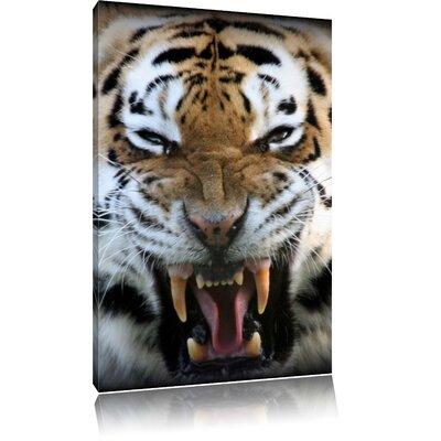 Pixxprint Roaring Tiger Photographic Print on Canvas