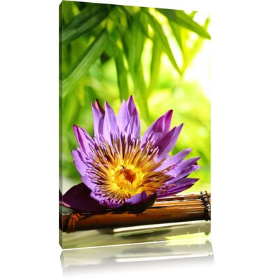 Pixxprint Exotic Water Lily on Bamboo Photographic Print on Canvas