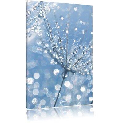 Pixxprint Fresh Morning Dew on Delicate Dandelion Photographic Print on Canvas