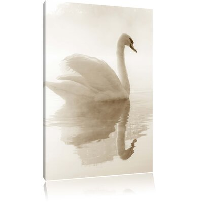 Pixxprint Lonesome White Swan in the Fog Photographic Print on Canvas