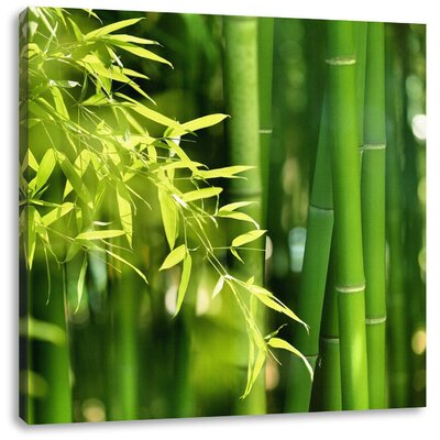 Pixxprint Tall Fresh Bamboo with Leaves Photographic Print on Canvas