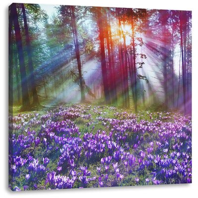 Pixxprint Lavender in Forest Photographic Print on Canvas