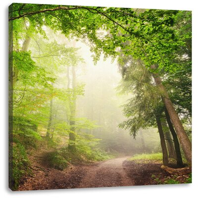 Pixxprint Rays of Sun on Forest Path Photographic Print on Canvas