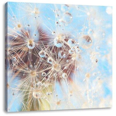 Pixxprint Delicate Drops on Dandelion Photographic Print on Canvas