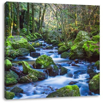 Pixxprint Forest Stream and Mossy Rocks Photographic Print on Canvas