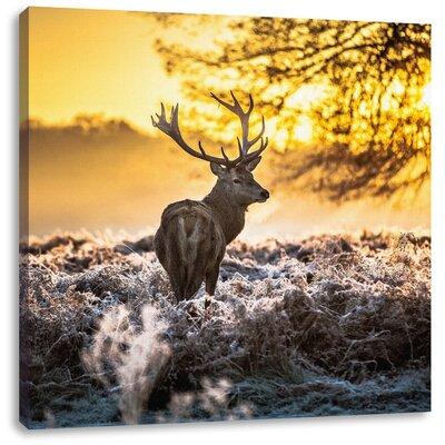 Pixxprint Majestic Deer on Frozen Ground Photographic Print on Canvas