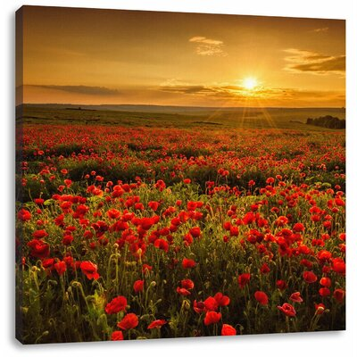 Pixxprint Romantic Poppy Field in the Golden Hour Photographic Print on Canvas