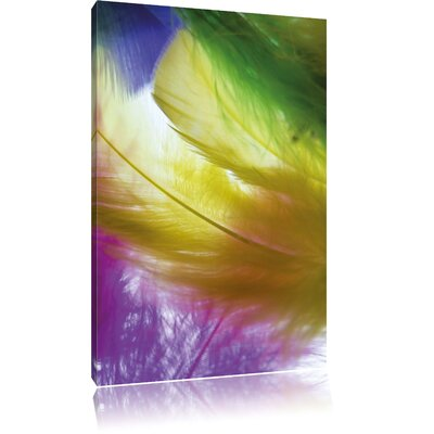 Pixxprint Colourful Feathers Photographic Print on Canvas
