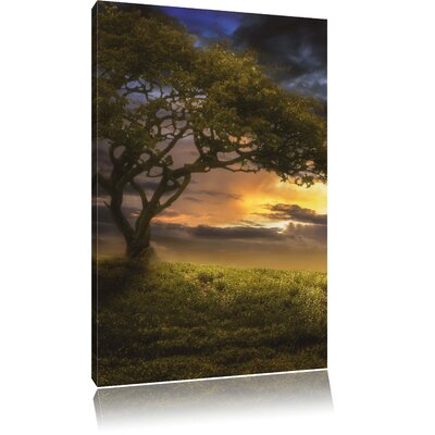 Pixxprint Lonely Tree Photographic Print on Canvas