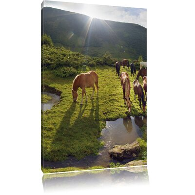 Pixxprint Horses on a Meadow Photographic Print on Canvas