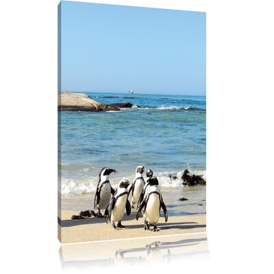 Pixxprint Penguins on the Beach Photographic Print on Canvas