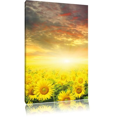 Pixxprint Sunflower Field Photographic Print on Canvas