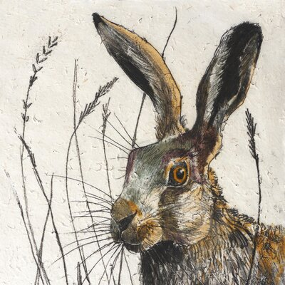 AnnabelLangrish Hare by Annabel Langrish Graphic Art