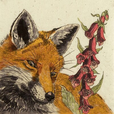 AnnabelLangrish Foxy by Annabel Langrish Graphic Art in Brown