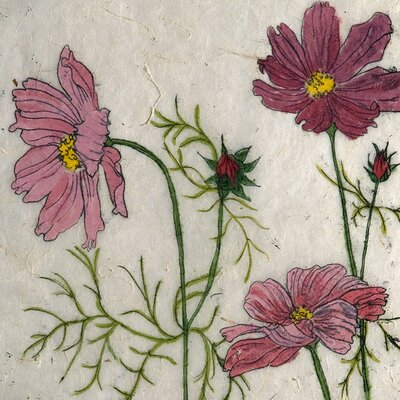 AnnabelLangrish Cosmos by Annabel Langrish Graphic Art