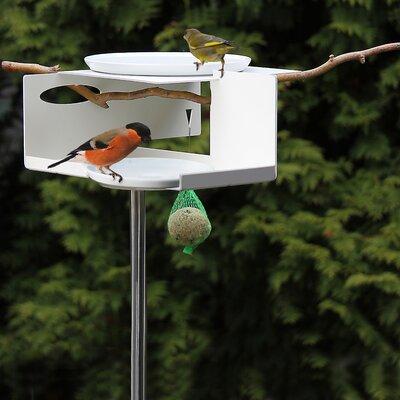 OPOSSUM design Bird Bath