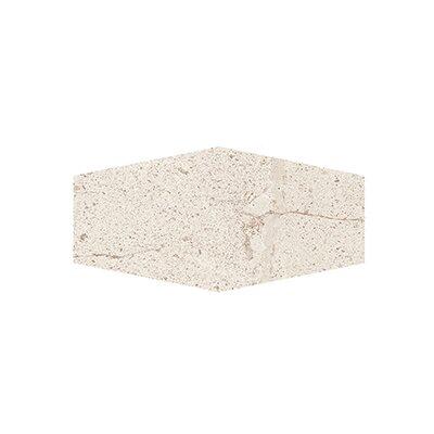 """Costal Forest 9.5"""" x 19.25"""" Porcelain/Stone Field Tile in Beige"""