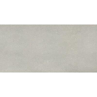 """24"""" x 24"""" Porcelain Field Tile in Polished Ash"""
