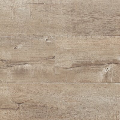 "7"" x 48"" x 12.3mm Laminate Flooring in Latte (Set of 22)"