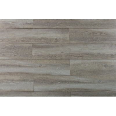 "Abdiel Arjuna 7.72"" x 47.83"" x 12.3mm Laminate Flooring in Brown"