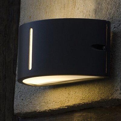 Eco Light Bonn 1 Light Outdoor Sconce