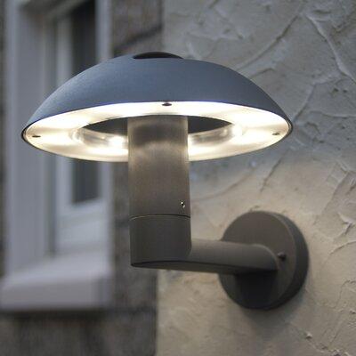 Eco Light Spril 16 Light Outdoor Sconce