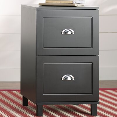 Orange City 2 Drawer Filing Cabinet Color: Black