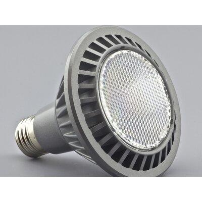 LEDlam LED E27 100W