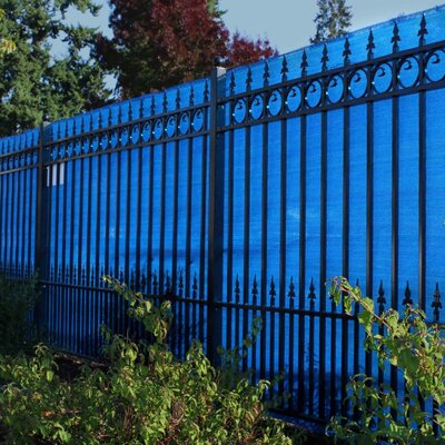 Sample Eye Outdoor Backyard Fencing Privacy Windscreen Finish: Blue