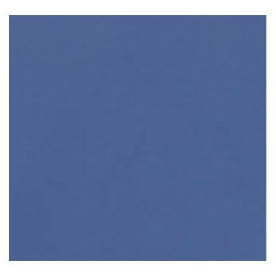 """78"""" H x 36"""" W x 24"""" D Standard Storage Cabinet Finish: Blue"""