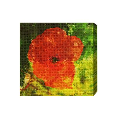 Andrew Lee Countryside Poppy Graphic Art Wrapped on Canvas