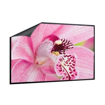 Klebefieber Rosa Orchidee Doormat