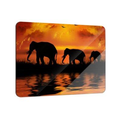 Klebefieber Elefantenfamilie Coaster Set