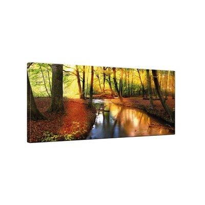 Klebefieber Waldlandschaft Photographic Print on Canvas