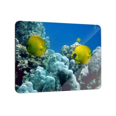 Klebefieber Kleine Koralle Coaster Set