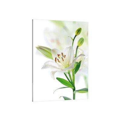 Klebefieber Weisse Lilie Glass Art
