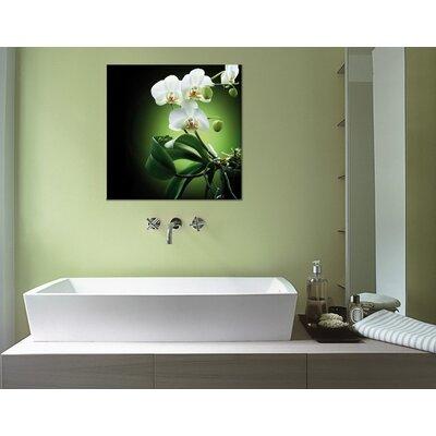 Klebefieber Orchideen auf Schwarz Photographic Print on Canvas