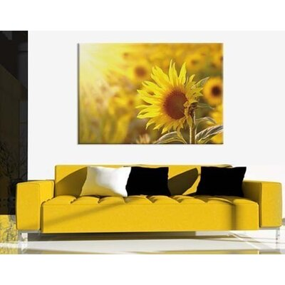 Klebefieber Sonnenblume Photographic Print on Canvas