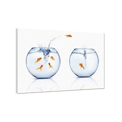 Klebefieber Springende Goldfische Photographic Print on Canvas