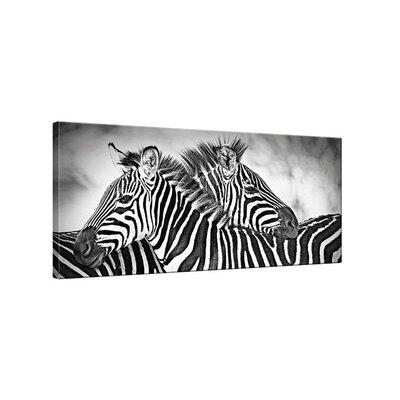 Klebefieber Zebras Photographic Print on Canvas