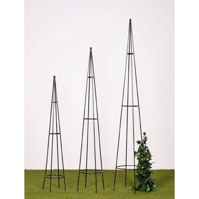 TakashoEurope Rankhilfe Obelisk-Set Morel