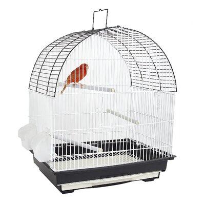 FUN Indiana Cage