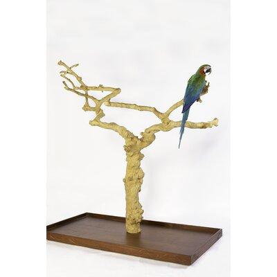 Adventure Bound Java Tree Stand