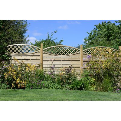 Grange Fencing Elite Eye Catcher