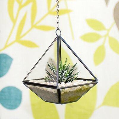 Dingading Diamond Hanging Terrarium
