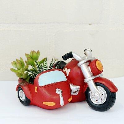 Dingading Motorbike Novelty Terrarium