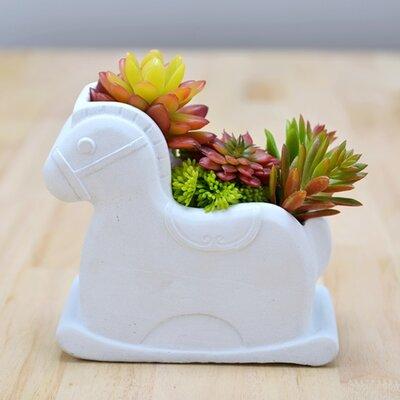 Dingading Horse Novelty Terrarium