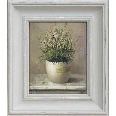 Brookpace Fine Art Oleographs 'Lavender' Framed Art Print