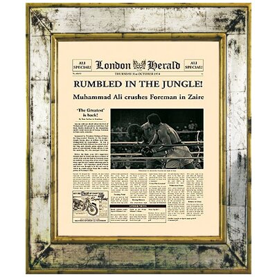 Brookpace Fine Art Versailles 'Rumbled in the Jungle' Framed Graphic Art
